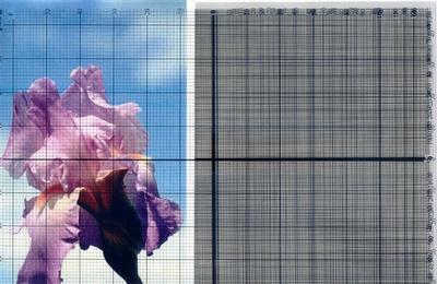Transparante rasters 6 verschillende