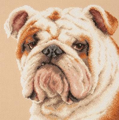 Borduurpakket Bulldog