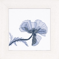 Home and Garden Collection - Poppy