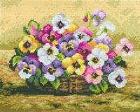 Mand met viooltjes